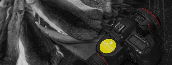 Imagefilm Rhein- Design